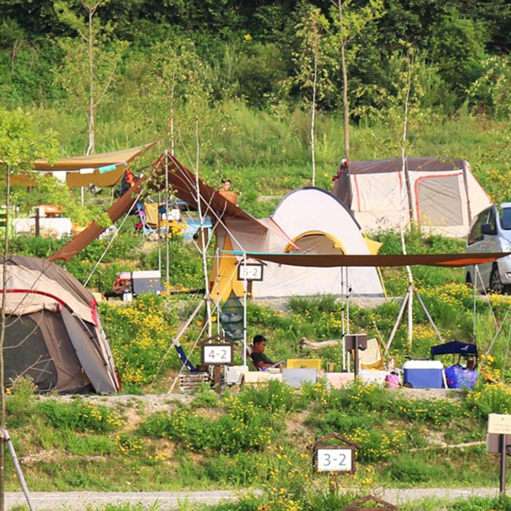 [횡성] 2020 웰리힐리 가을시즌 캠핑장 패키지(2020.11.1까지)