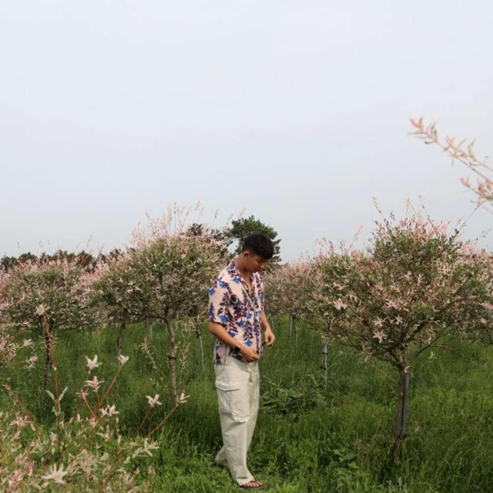 [제주도 동쪽] 제주도 동쪽 버스투어 + 무료 사진 촬영