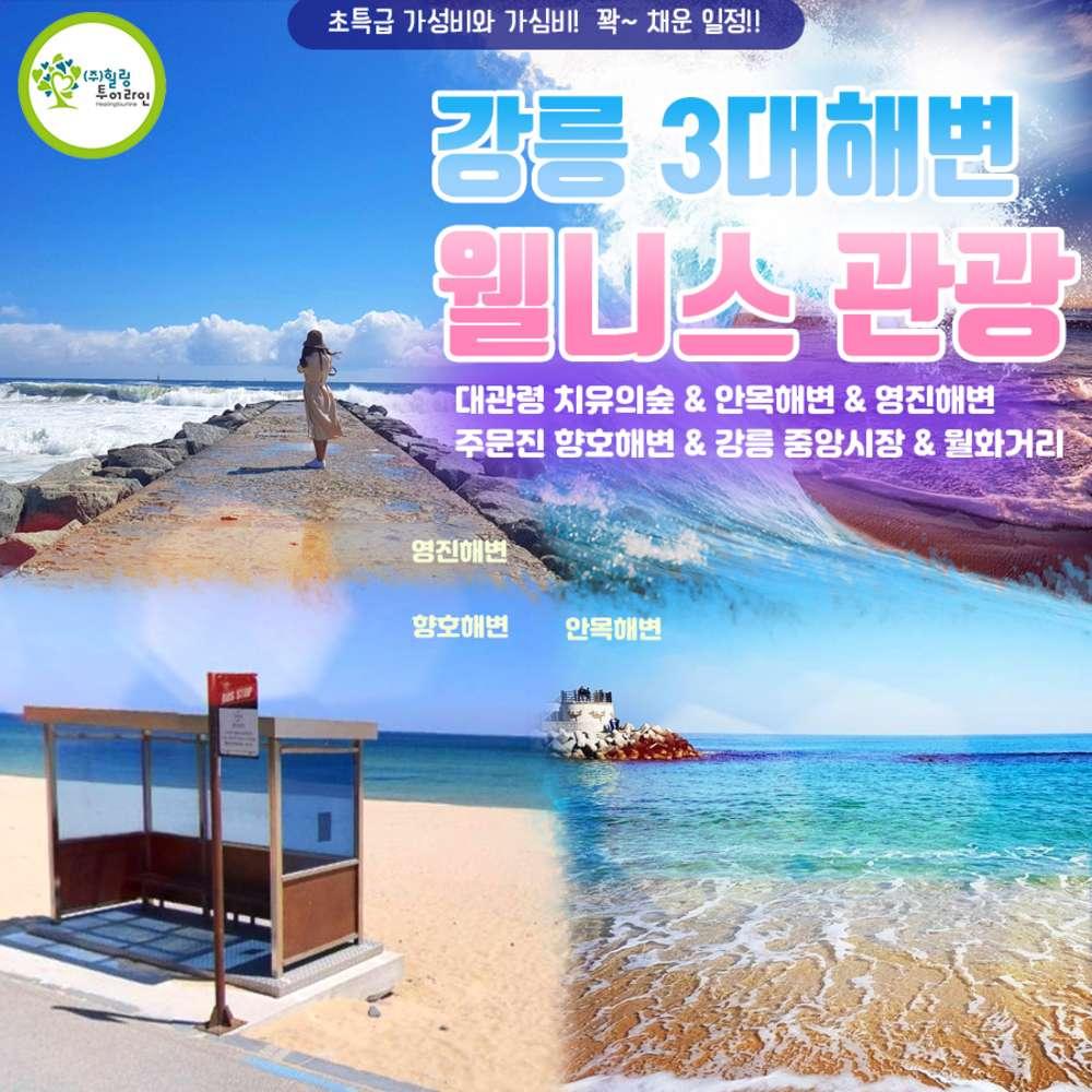 [강원] 3대해변 웰니스 관광 당일여행