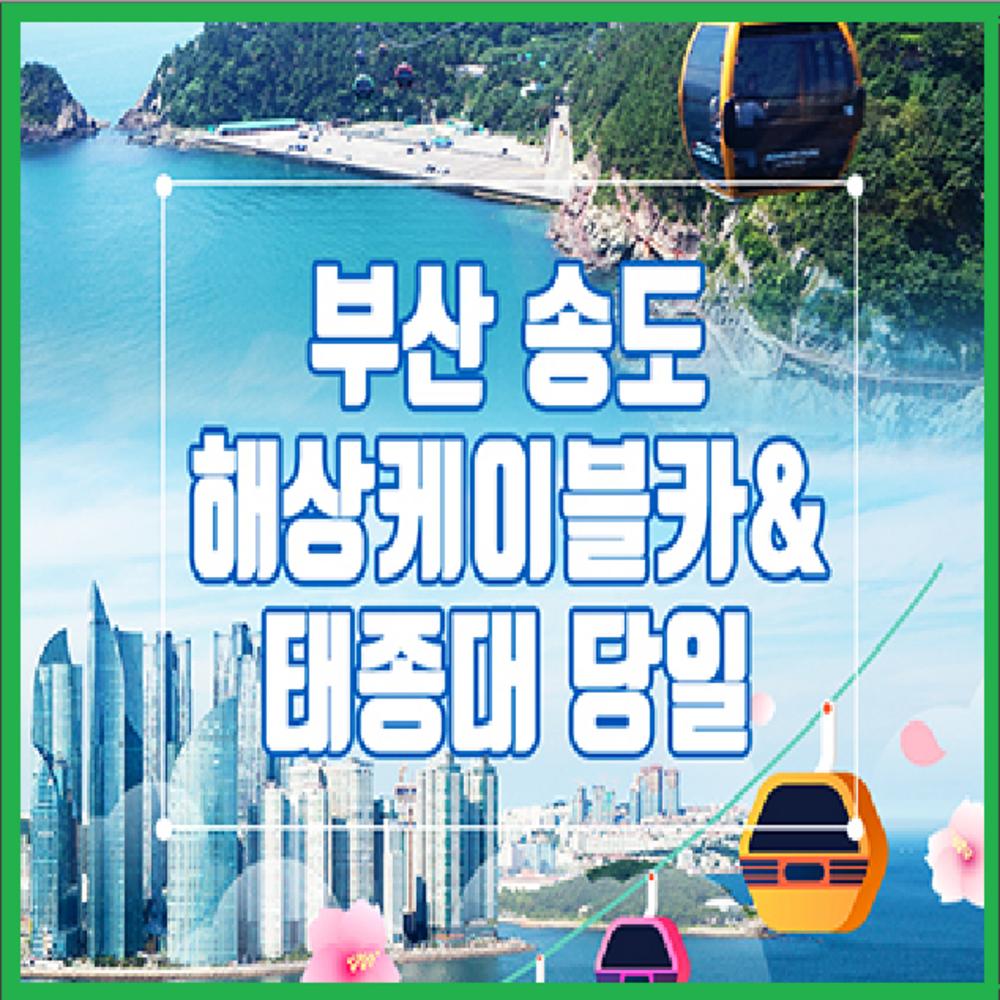 [부산] ★대구/경북出★부산 송도해상케이블카+태종대