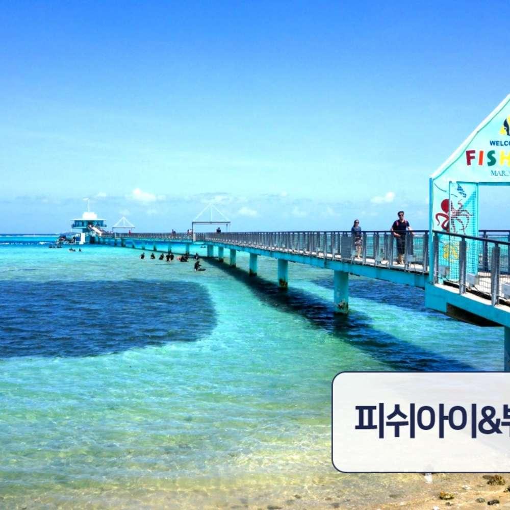 [괌] [트리버여행] 괌 피쉬아이 마린파크(해중전망대) 입장권&런치뷔페