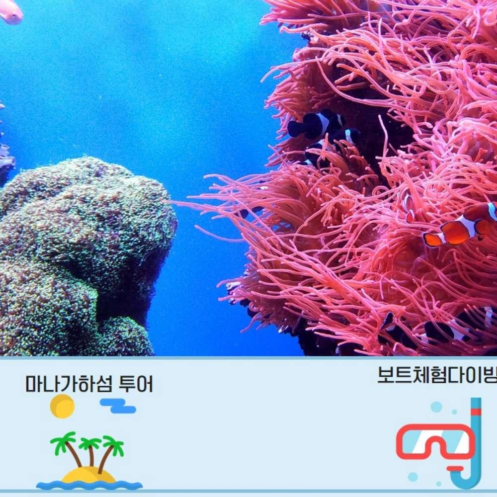 [사이판] [트리버여행] 사이판 마나가하섬+보트체험다이빙