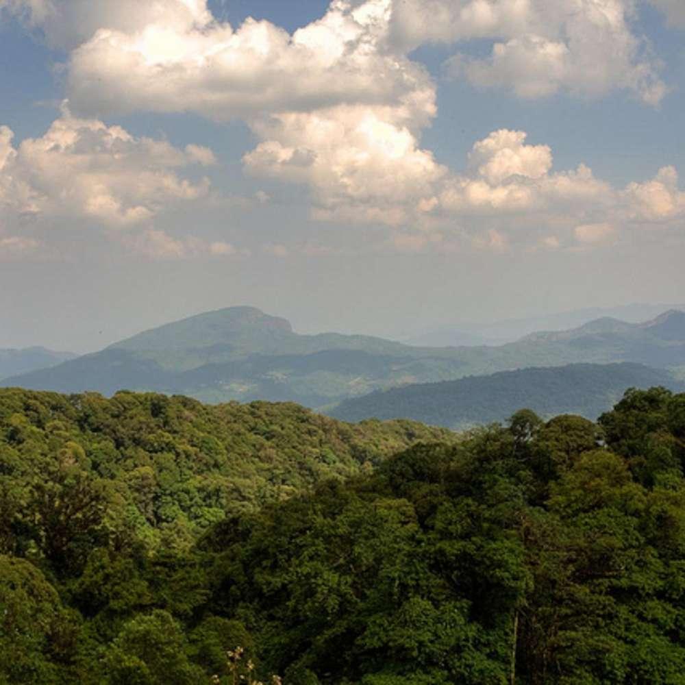 [치앙마이] 도이인타논 국립공원 투어