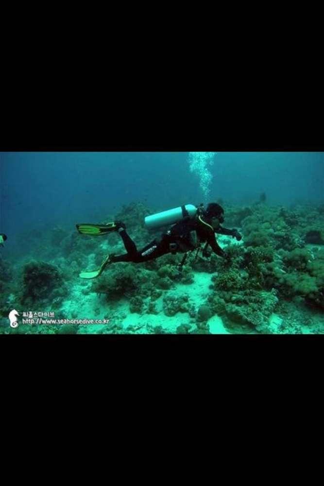 [태국, 파타야] [투어] (한국인 전용)-스쿠버 체험 다이빙+해양 스포츠 4종(태국/파타야)