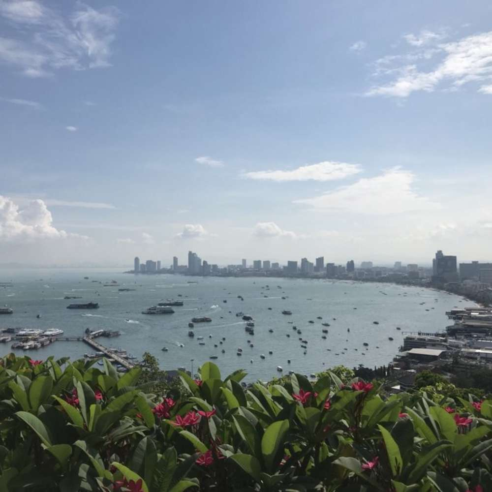 [태국, 파타야] [투어] 해피데이 투어- 산호섬/농눅/코끼리/황금절벽사원/뷰 포인트 (파타야 하루투어)
