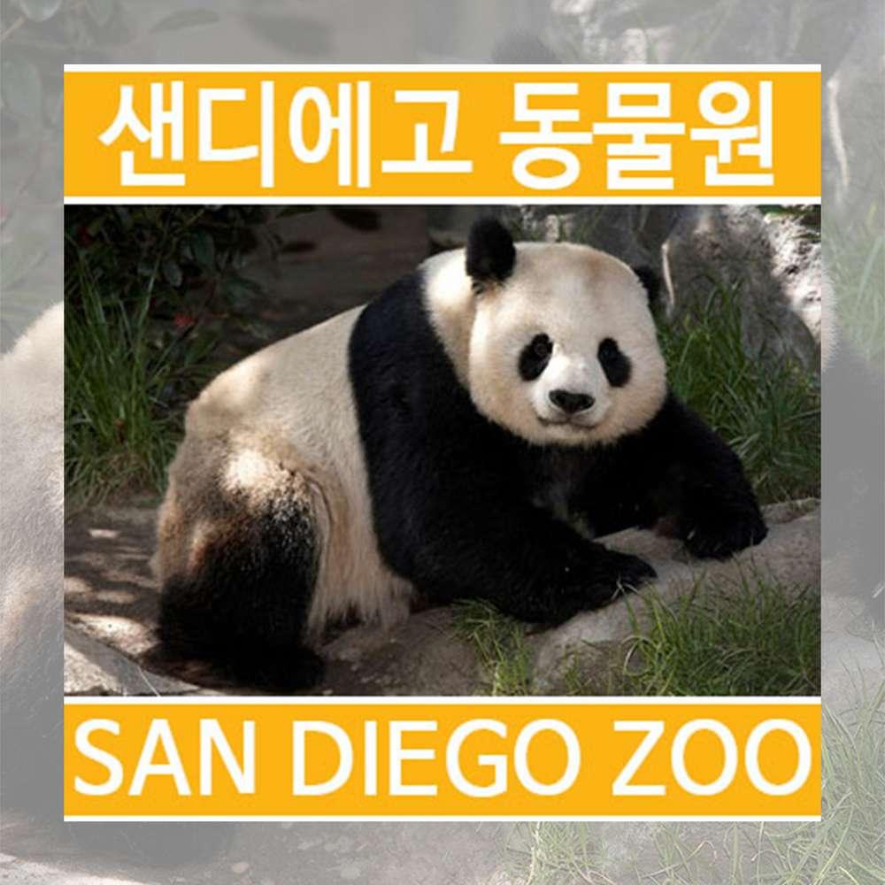 [미국/샌디에고] 샌디에고 동물원 입장권