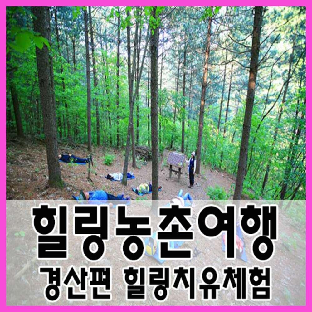 [경상] ★서울/대전出★힐링농촌여행 경산편_힐링치유체험