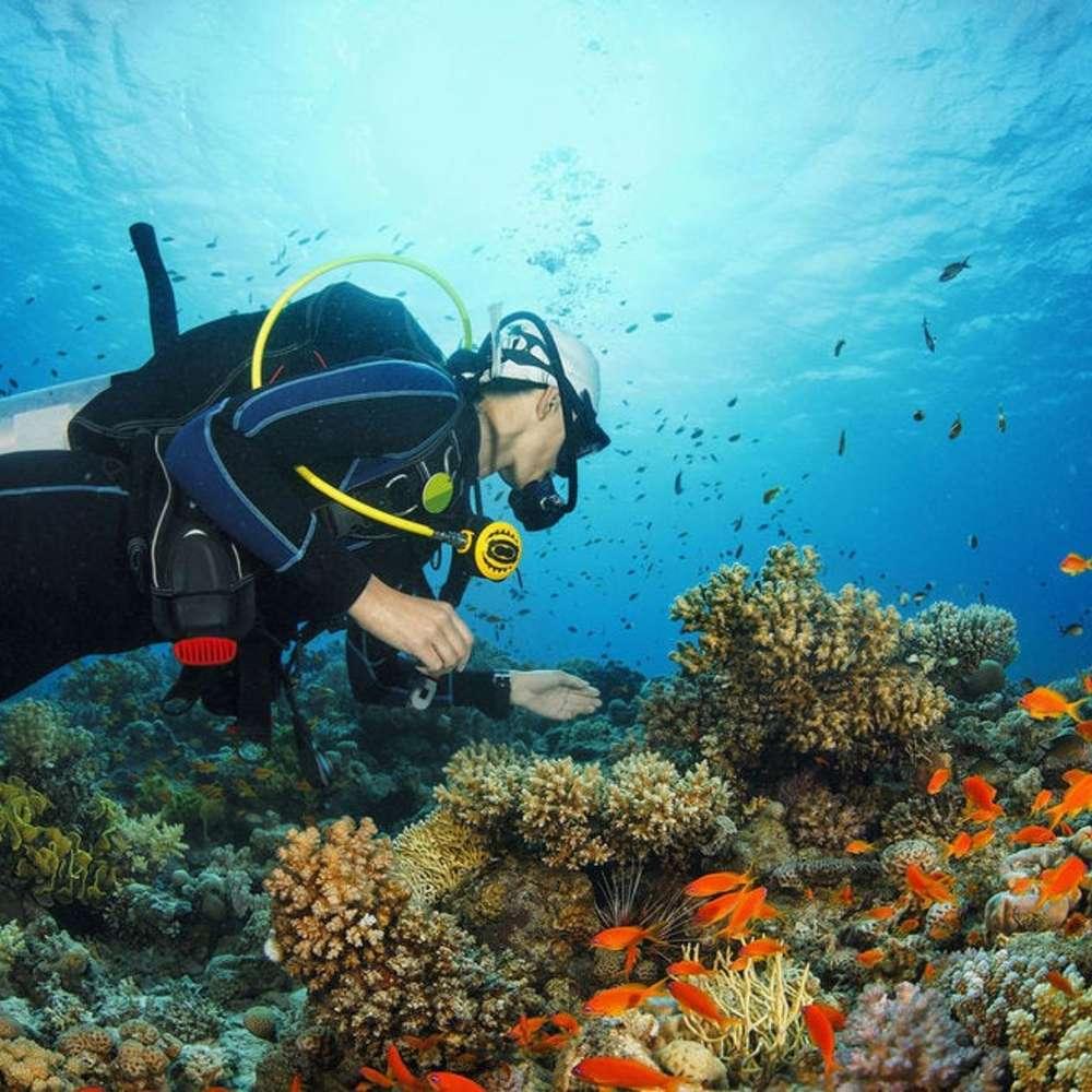 [보라카이] 보라카이스쿠버다이빙 (보라카이체험다이빙)