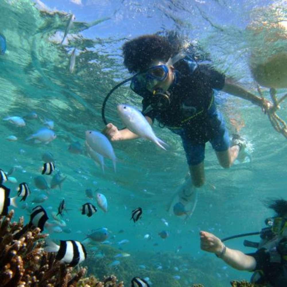 [괌] [벨트라] 프로 다이버와 함께하는 스노쿨링 + 다이빙 체험