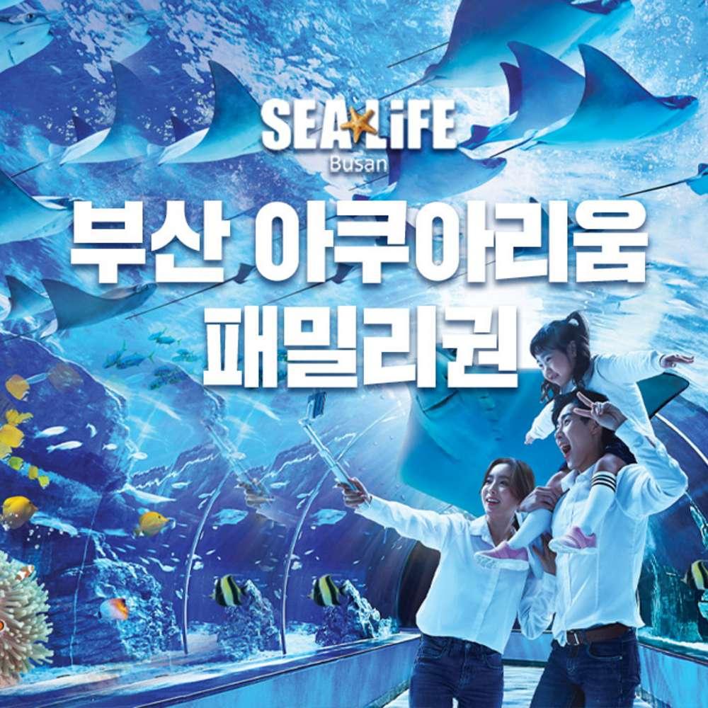 [부산] SEALIFE 부산 아쿠아리움 패밀리 입장권