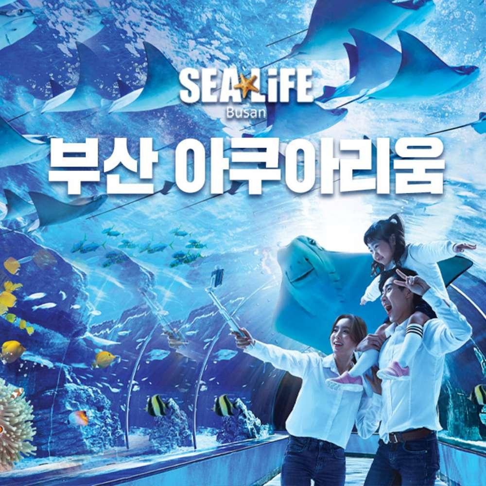 [부산] SEALIFE 부산 아쿠아리움 입장권