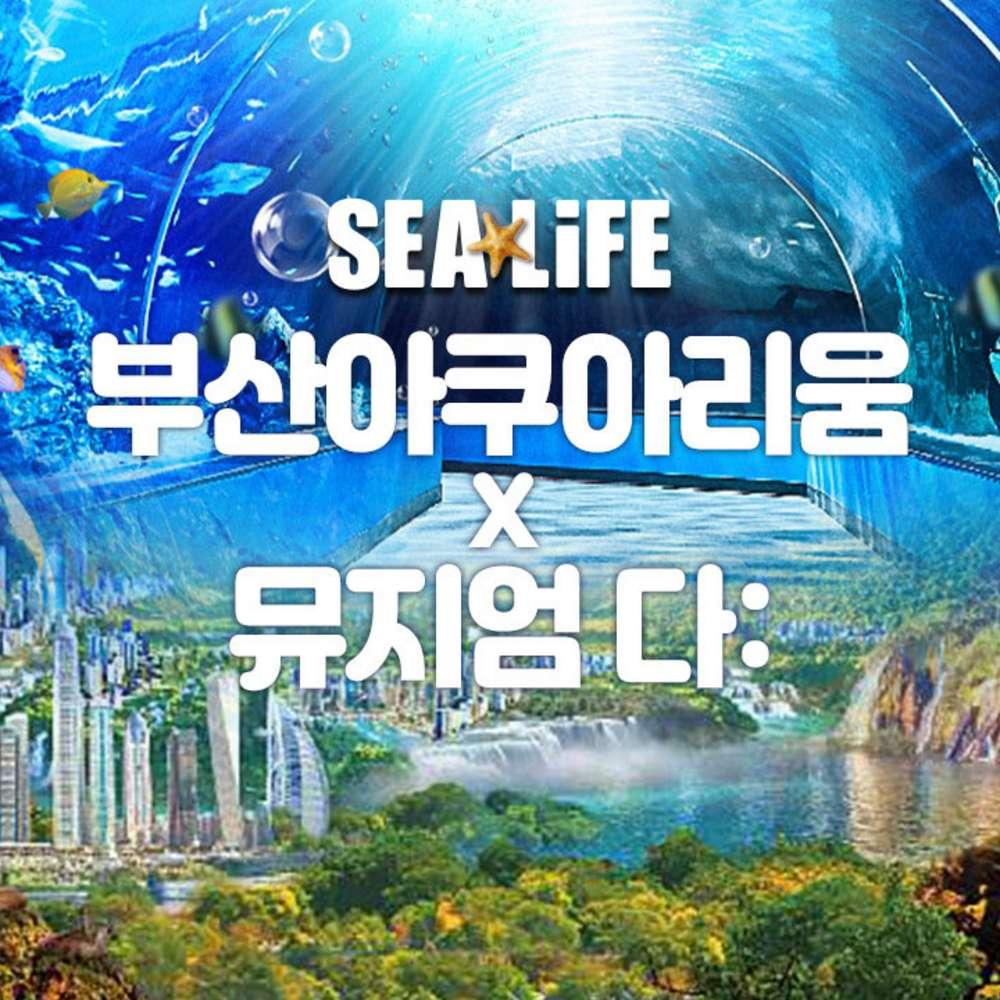 [부산] SEALIFE 부산 아쿠아리움+뮤지엄 다