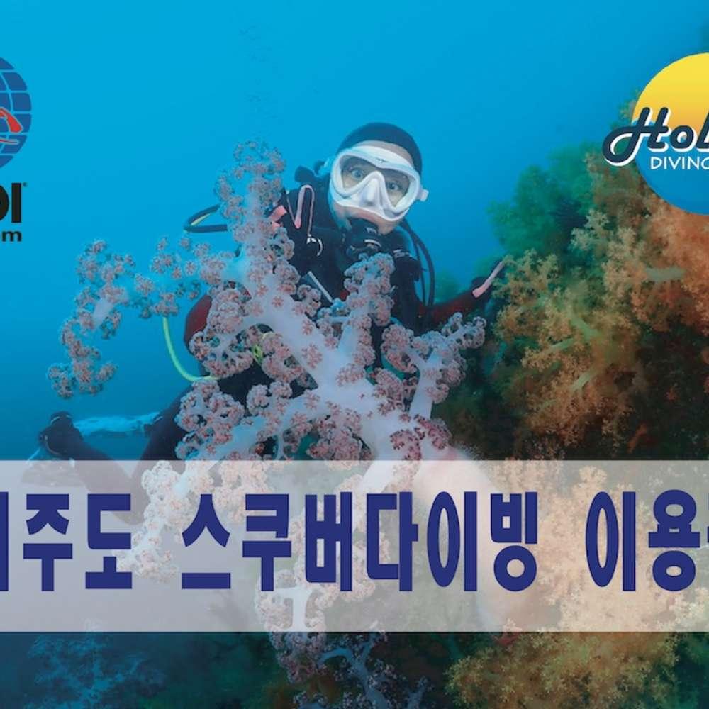 [서귀포] [제주도-서귀포] 체험다이빙 / 스쿠버다이빙 / 스킨스쿠버 / 수중촬영이벤트
