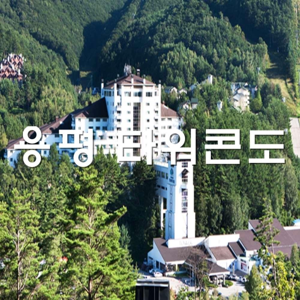 [용평리조트] 용평리조트 타워콘도
