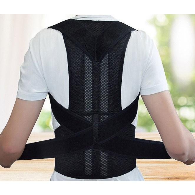 바른자세 밴드 어깨 척추 허리 지지 방지 완화 예방 등, L