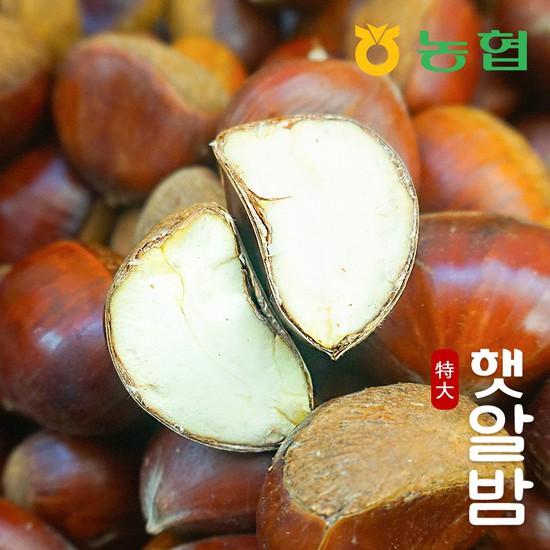 [농협] 토실토실 고소한 순창 알밤 특대 5kg 햇밤, 햇알밤 특대 5kg, 상세설명 참조