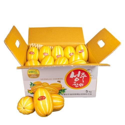 성주참외농협 참외풍경 성주 참외 4.5kg(미니) 농협인증 단품, 4.5kg, 1개