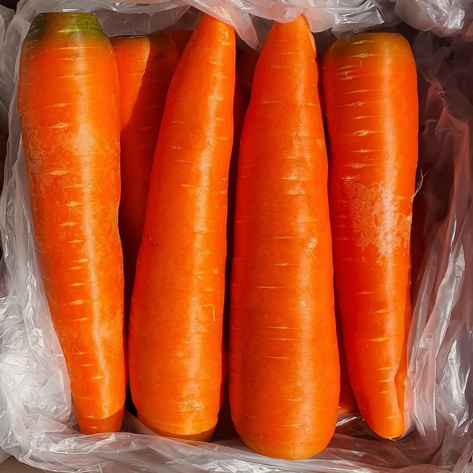세척 당근 최상품 신선 carrot 5kg 10kg, 5kg (개당300g내외), 1box