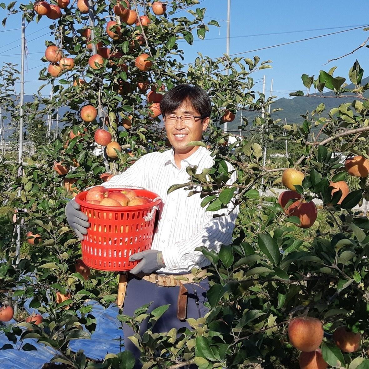 [사과삼촌]장수사과 햇사과(흠과-무선별) 5KG 8KG, 홍로 흠과(무선별)5KG