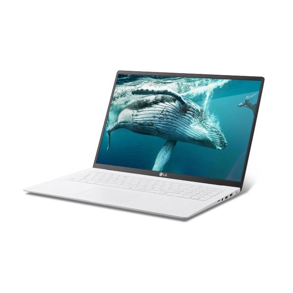 LG전자 2020 그램14 14ZD995-GX50K 노트북 (CTO가능), 8GB, / SSD:256GB,256GB,64GB,64GB,256GB,256GB, 윈도우미탑재(프리도스)