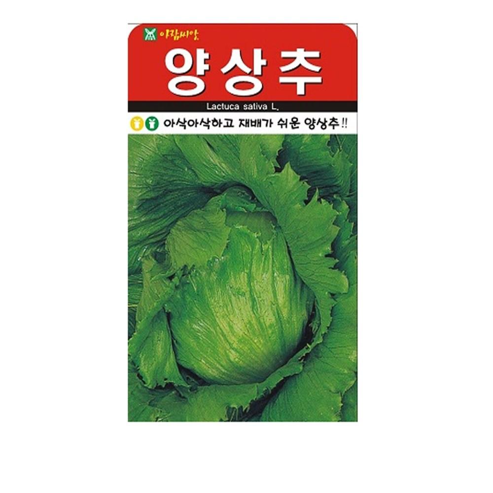 SN월드 씨앗 쌈채소 잎채소 모음, 양상추_양대파씨앗