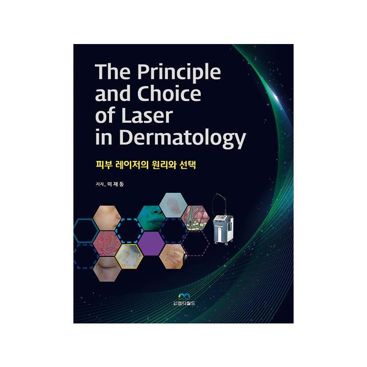 피부 레이저의 원리와 / 피부미용 진단과 치료 CO2 레이저 기미 원인 의학서적