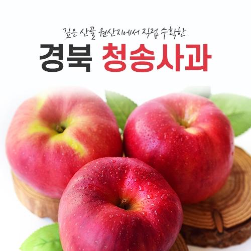 훈이네 과일(초특가 상품) 새콤 달콤한 햇사과 가정용 흠과 청송사과, 1box, 03) 가정용 사과 2kg /대과