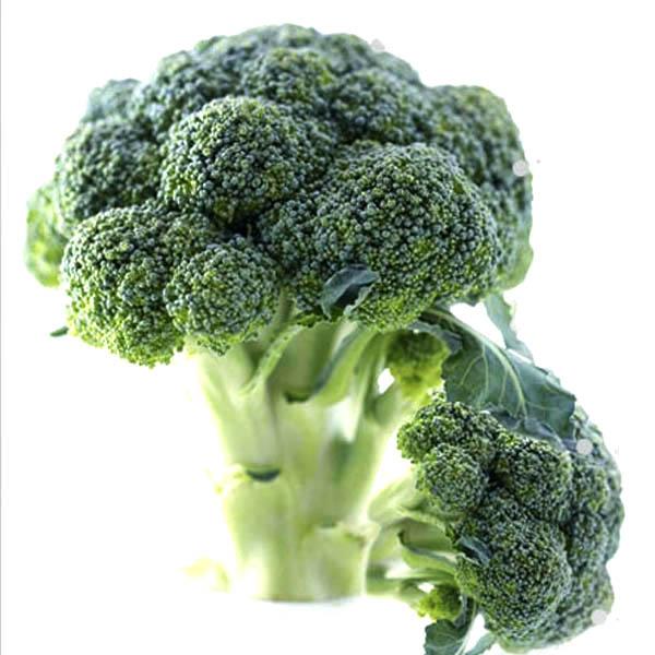 [농사꾼과아지매] 무농약 친환경 브로콜리 1.5k이상(4송이), 1box, 특품1.5k