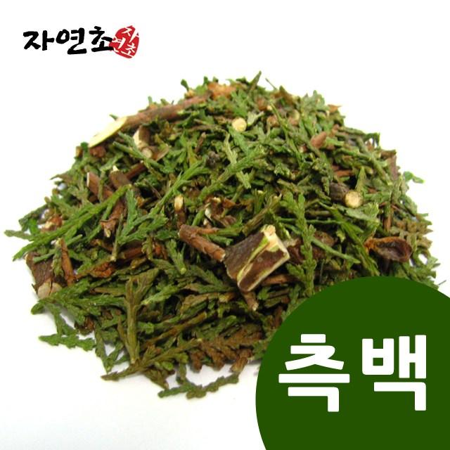 자연초 측백 측백나무잎 측백엽 측백차 600g, 1개