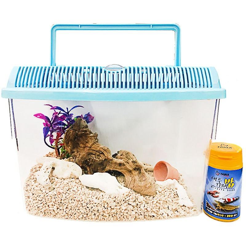 아이과학 바다생물 키우기세트 [대] 바다소라게 가재 새우 바닷게