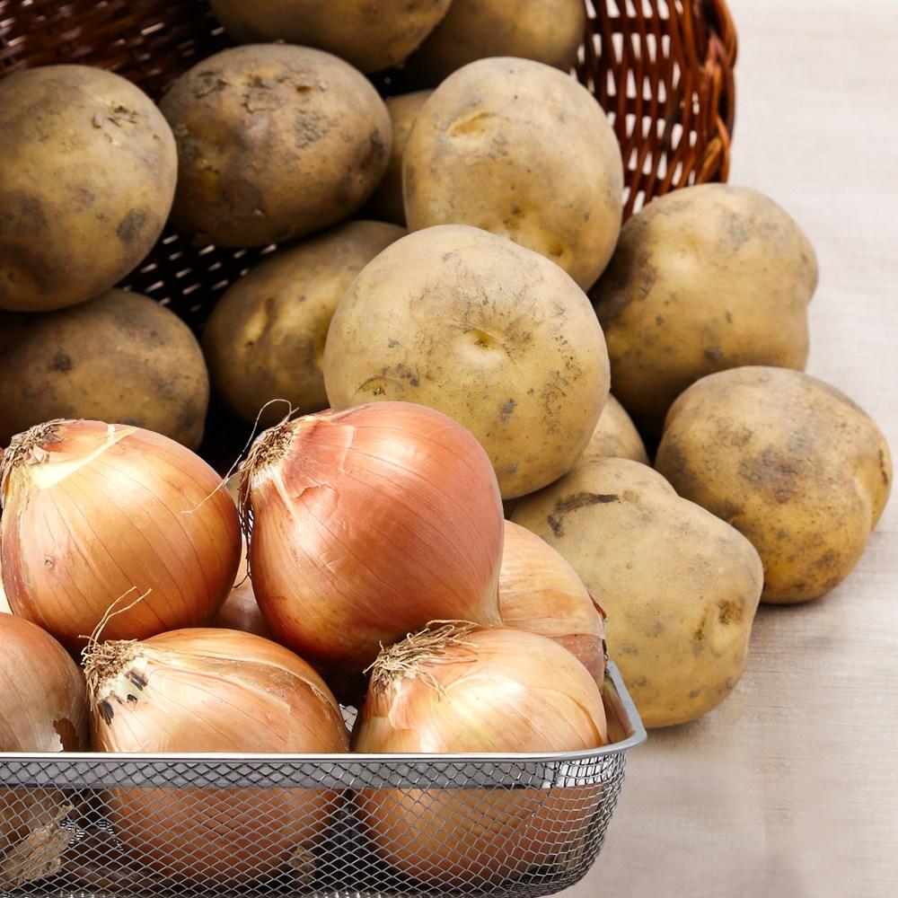 친환경팔도 강원도 햇 수미감자 무안 양파 골라담기, 감자(대)5kg