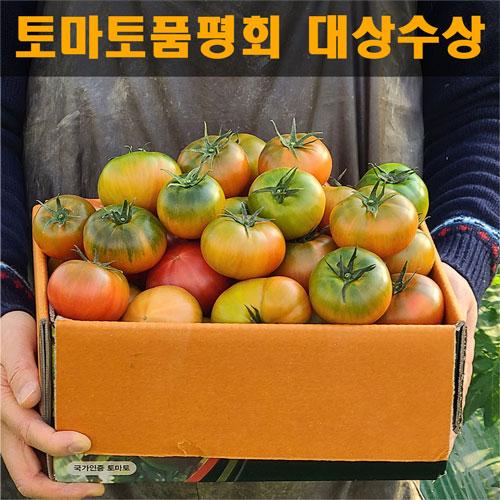 대저짭짭이토마토 추천 최저가 실시간 BEST