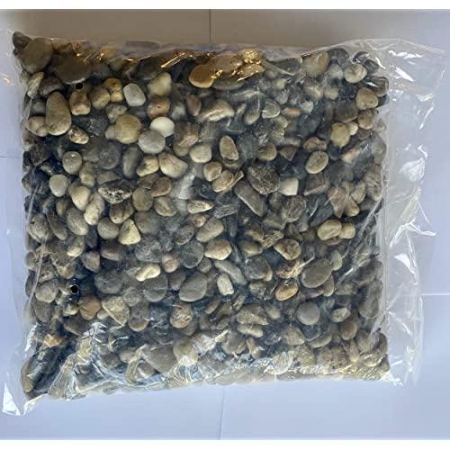 NMT 장식 정원 자갈 야외 조경 또는 실내 프로젝트에 사용되는 강 바위 (어항 및 화분에 심은 식물) 30 lb - P038001CITQ4S23, 기본