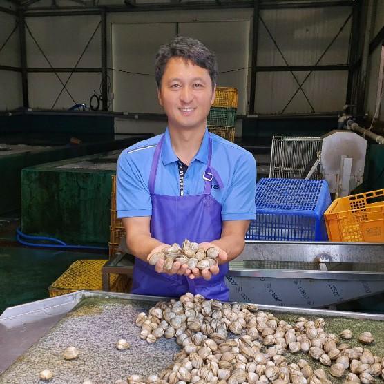 고창 동죽조개 물총조개 3kg (수작업) (해감완료) 제철 조개국 바지락 술찜, 동죽 3kg