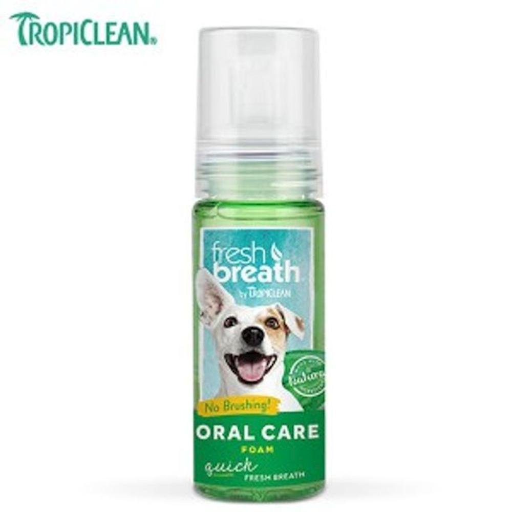 트로피클린 거품치약 강아지치약 애견치약 애견칫솔 오라틴치약 강아지, 1개