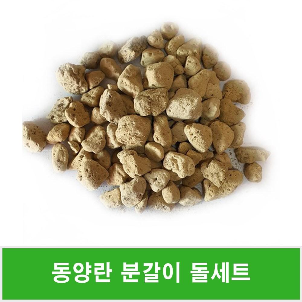 동양란 분갈이돌세트(대 중 소립)난석 휴가토+사은품36ml영양제10개
