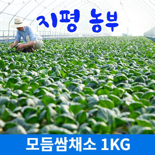 [물맑은 양평] 지평 농부 모듬쌈채소(1kg)