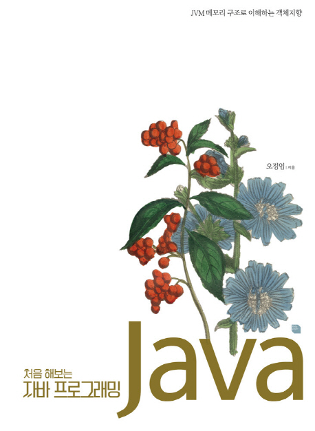 처음 해보는 자바 프로그래밍:JVM 메모리 구조로 이해하는 객체지향, 루비페이퍼