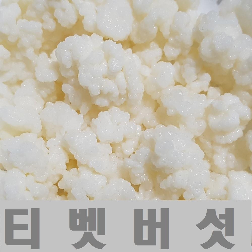 티벳버섯 케피어그레인, 10g(20cc)+사은품