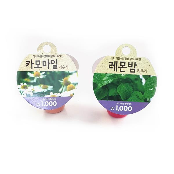 꽃장식 원예 식물키우기 화분쇼핑몰 카모마일. 레몬밤, 레몬밤 키우기