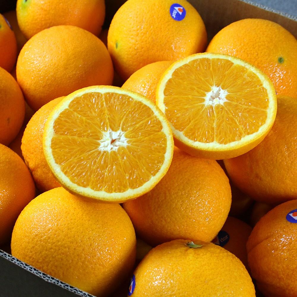 과즙이 풍부한 네이블오렌지(호주산) 대과250g내외 72과, 10입