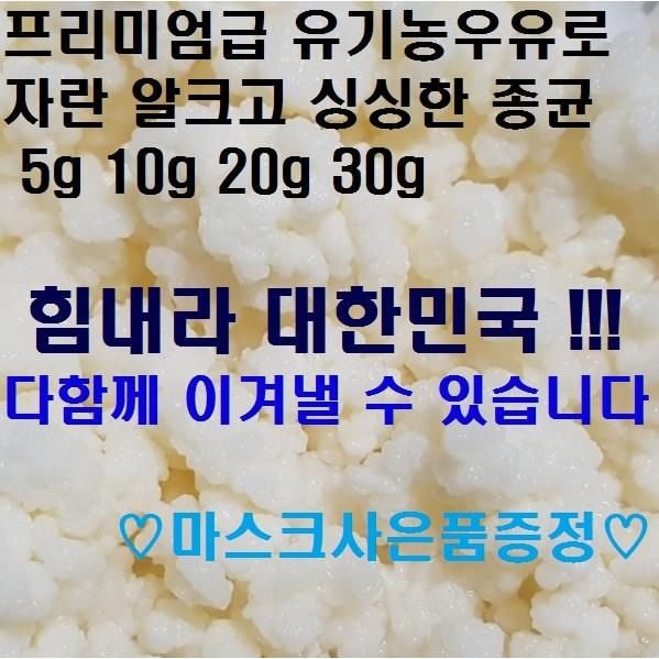 티벳버섯 케피어그레인, 1개, 10g(20cc)+사은품