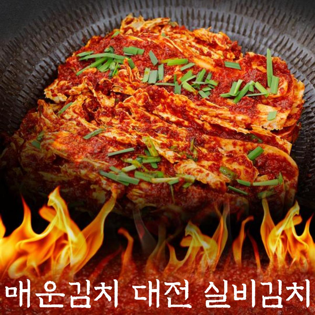 국내산 배추로 담근 매워도 맛있고 매워서 더욱 맛있는 매운 김치 대전 실비김치, 조풍연 실비김치 2kg-21-5649406280