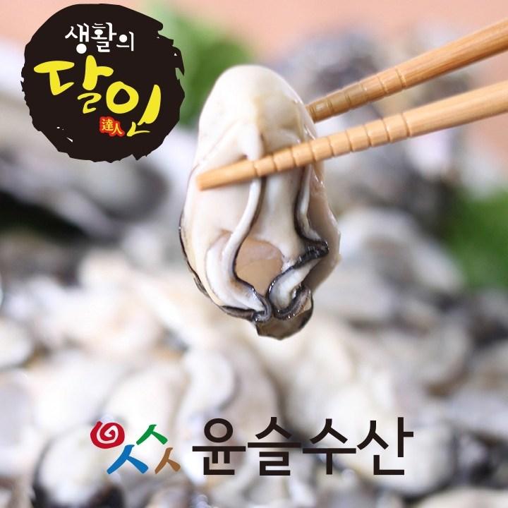 슬기로운 구매생활!~ (통통 싱싱)통영생굴, 1박스, 1kg
