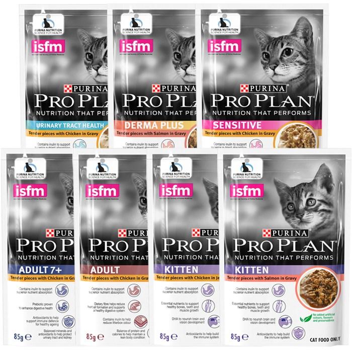 퓨리나 프로플랜 고양이 습식사료 주식파우치 85g 12개, 1020g, 키튼 치킨젤리 85g×12개