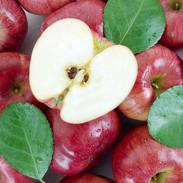 클라스가 다른 경북 햇 홍로 사과 정품 10kg, 1박스, 경북 햇 홍로 사과 정품 10kg 44-47과