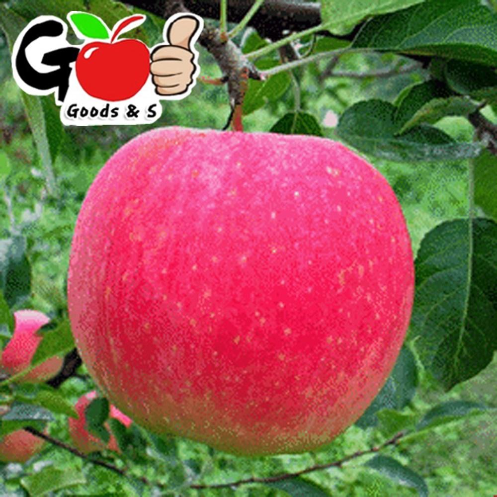 (딱~오늘 하루만) 새콤달콤 빨간 햇사과 4kg / 7-8kg / 농장직송 초특가, 사과 4kg(14-25과)(중소랜덤)