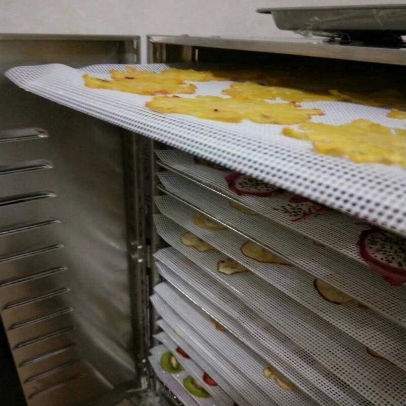 식품건조기 건조기 전용 실리카겔매트 과일과야채 녹두 과일 전용매트 내온성 망고 건조, T10-28.5cm*20cm건조 매트 5매입