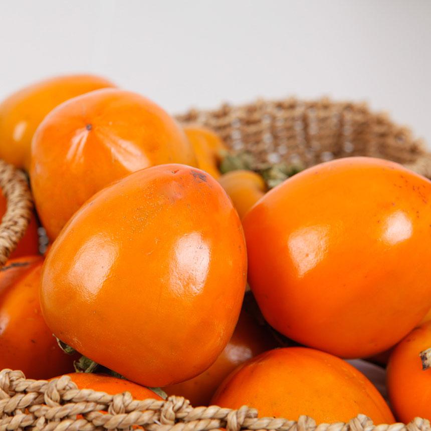 [가을의 선물]달콤한 고당도 대봉감, 특대과 10과(2.5kg내외)