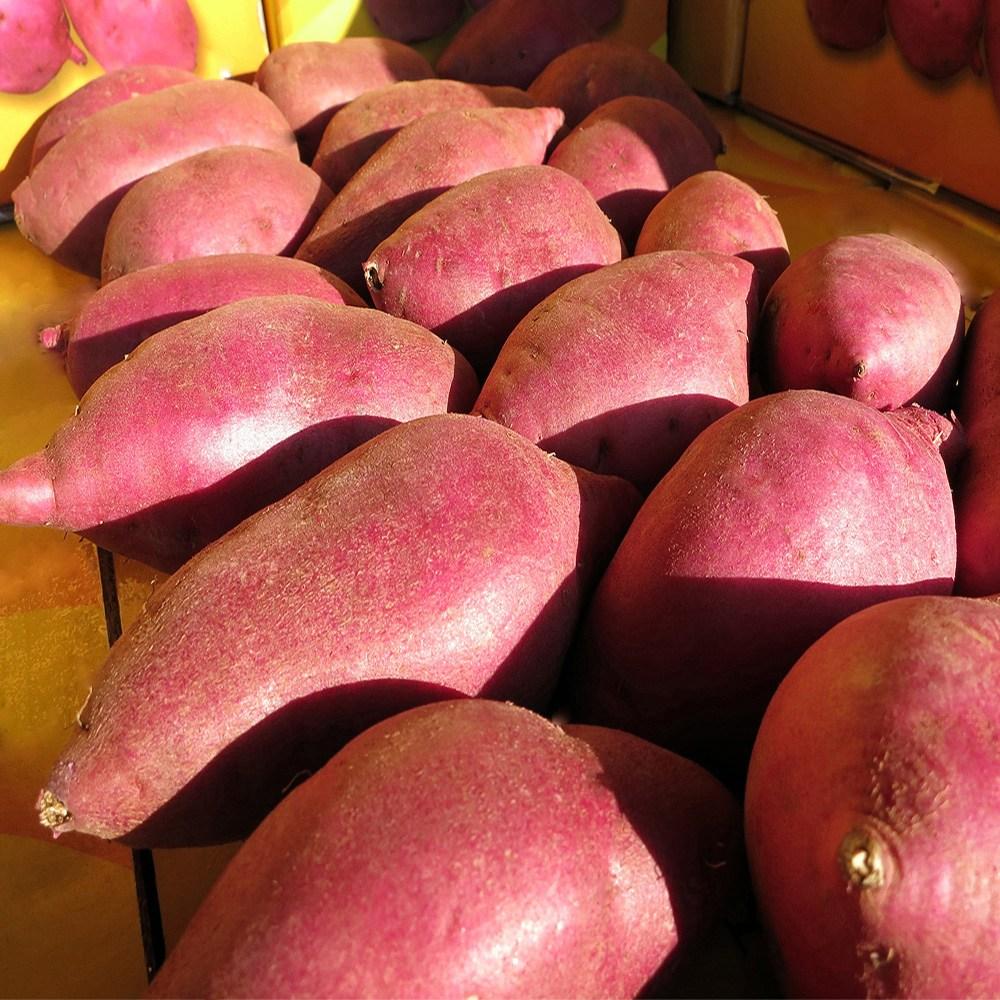 [쟁기돌이] 경기도 여주 형제농원 목매이는 옛날 100% 오리지날 원조 밤고구마, 1박스, 밤고구마 큰왕 2kg